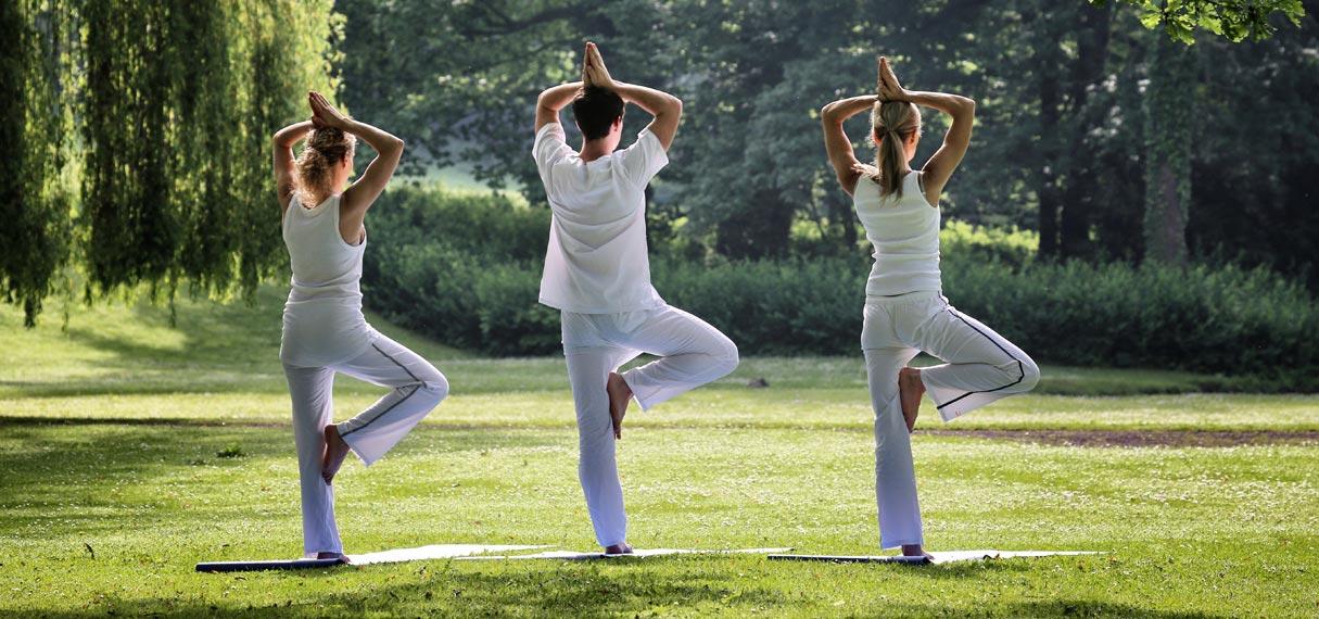 Gräflicher Park Health & Balance ****s